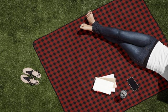 Image shows outdoor picnic blanket in use.