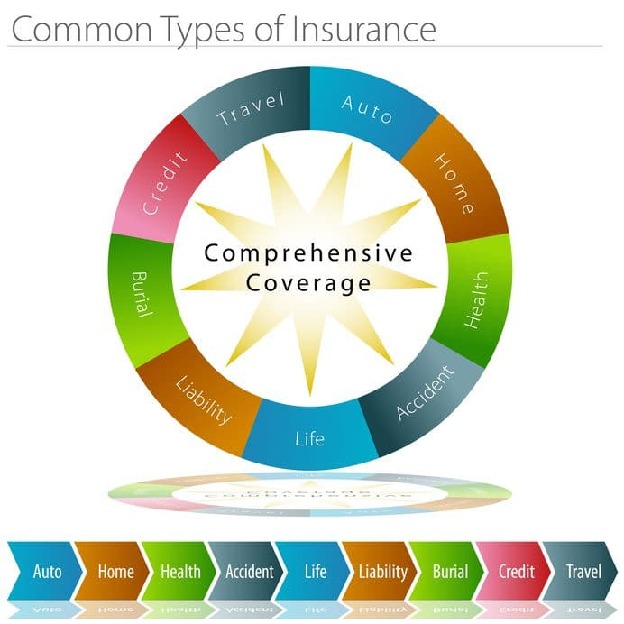 This is a graphic which names the various types of insurance available for a road trip.