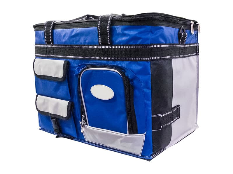 This photo shows a soft sided cooler with a plastic insert, which is ideal for a road trip.
